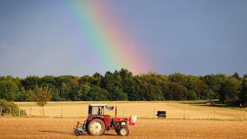 Achat de tracteurs d'occasion : comment bien choisir ?